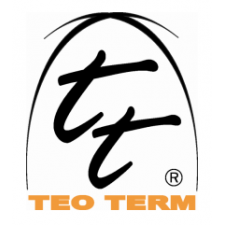 TeoTerm